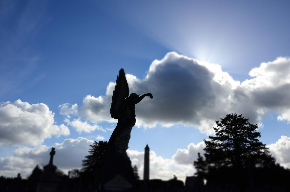 From Glasnevin Cemetry. <br>Photo: Fergal Flannery